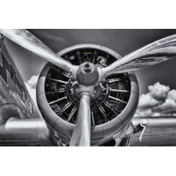 Hélice DC3 noir et blanc