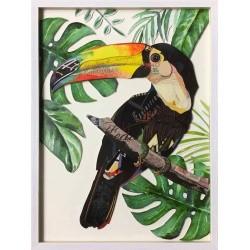 Oiseau tropical 1