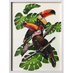 Oiseau tropical 2