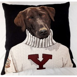 Coussin College Dog
