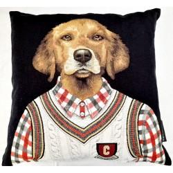 Coussin College Dog vest