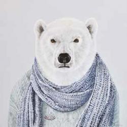 Ours avec écharpe